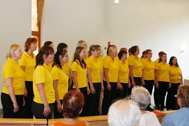 2008 - Teilnahme beim Muldentaler Chorwettbewerb